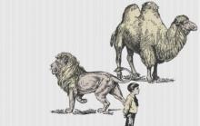 nietzsche camello león niño
