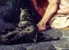 el-perro-celestial-diogenes-de-sinope-emil-cioran