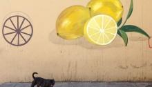 Pintada barrio gitano